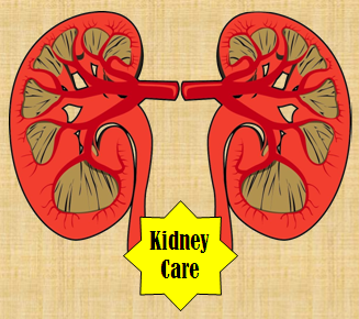 Kidney Food, Medicines, Tests, Doctors, Surgeries