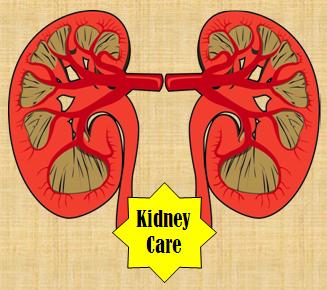 Kidney Food, Medicines, Tests, Doctors, Surgeries