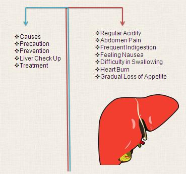 Liver Gastro Check Up