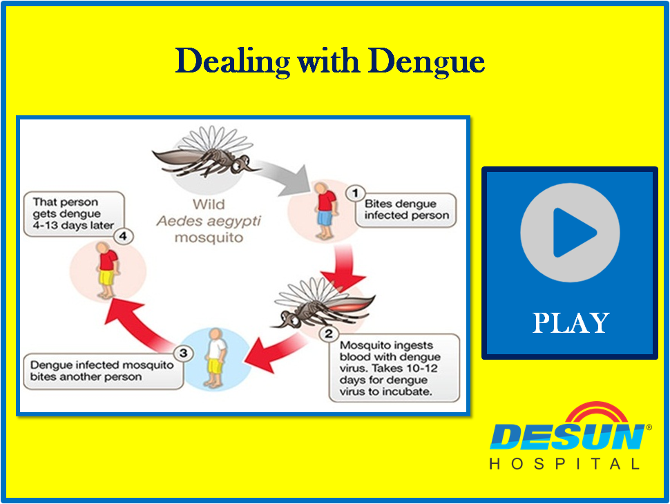 Dealing with Dengue - Quick Points